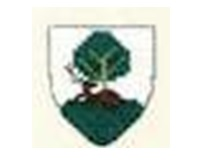 Selkirkshire CC arms
